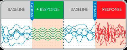 baseline_report